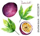 watercolor  illustration... | Shutterstock . vector #423121879
