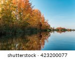 Autumn Trees On The Coast Of A...