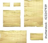 bamboo papyrus banner   vector... | Shutterstock .eps vector #423247939