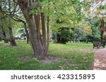 park alley in the botanical... | Shutterstock . vector #423315895