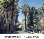 park alley in the botanical... | Shutterstock . vector #423315931