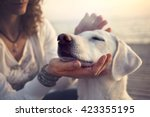 Stock photo owner caressing gently her dog 423355195