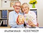 Smiling Senior Couple With Eur...