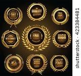 golden medallion with laurel... | Shutterstock .eps vector #423384481