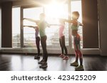fitness  sport  training  gym... | Shutterstock . vector #423425209