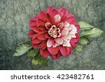 drawing oil painting dahlia... | Shutterstock . vector #423482761