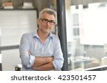 portrait of businessman sitting ... | Shutterstock . vector #423501457
