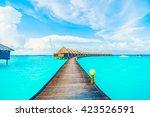 beautiful tropical maldives...   Shutterstock . vector #423526591