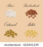 millet  buckwheat  oatmeal ... | Shutterstock .eps vector #423541159