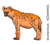 hyena. african spotted hyena. | Shutterstock .eps vector #423644401