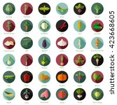 set of flat round vegetable... | Shutterstock .eps vector #423668605