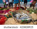 fishermen going to catch a fish ...   Shutterstock . vector #423828925