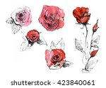 Watercolor Red Rose Set....
