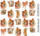 pattern with a funny dog.... | Shutterstock . vector #423933421