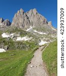 Path In The Massif Of Cerces...