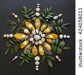 Natural Plant Mandala Flat Lay...