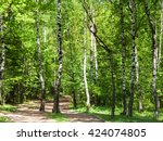 Natural Background   Pathway I...