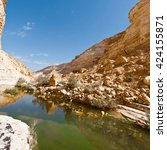 canyon en avedat of the negev... | Shutterstock . vector #424155871