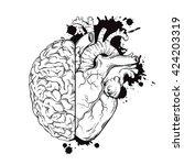 hand drawn line art human brain ... | Shutterstock .eps vector #424203319