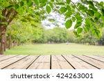 empty wooden table with garden... | Shutterstock . vector #424263001