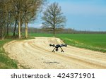 Drone Flying Above Gravel Road.