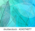 beautiful abstract background... | Shutterstock . vector #424374877