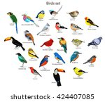 big set birds. birds flying ... | Shutterstock .eps vector #424407085
