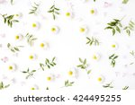 Stock photo floral frame with chamomile flower and green branches flat lay top view 424495255