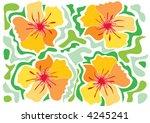 tropical yellow hibiscus ...