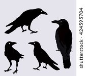 silhouette of a crows in... | Shutterstock . vector #424595704