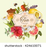 vector vintage herbal tea... | Shutterstock .eps vector #424610071