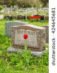 Headstone In A Cemetery With...