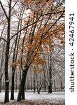 the first snow | Shutterstock . vector #42467941