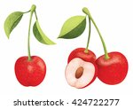 vector fresh ripe red cherries... | Shutterstock .eps vector #424722277