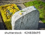 Grief On Cemetery   Withered...