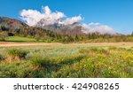 natural park of zelenci in... | Shutterstock . vector #424908265