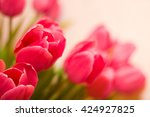 pink tulips against a white... | Shutterstock . vector #424927825