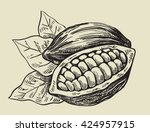 vector black cacao beans on... | Shutterstock .eps vector #424957915