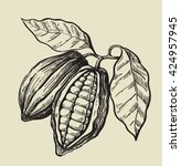 vector black cacao beans on... | Shutterstock .eps vector #424957945