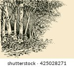 forest edge drawing  generic... | Shutterstock .eps vector #425028271