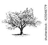 hand sketch tree. flowering... | Shutterstock .eps vector #425048779