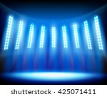 the stadium. vector... | Shutterstock .eps vector #425071411
