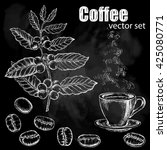 hand drawn vintage coffee plant.... | Shutterstock .eps vector #425080771