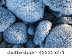 ice on rocks | Shutterstock . vector #425115271