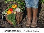 Fresh Organic Vegetables Into...