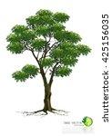 tree on white background | Shutterstock .eps vector #425156035