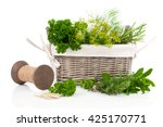 sage  parsley and rosemary in... | Shutterstock . vector #425170771