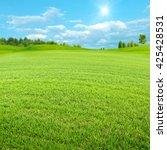 green spring valley  beauty... | Shutterstock . vector #425428531