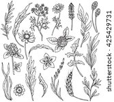 vector collection of hand drawn ... | Shutterstock .eps vector #425429731