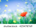 red poppy with starry sky... | Shutterstock . vector #425478769